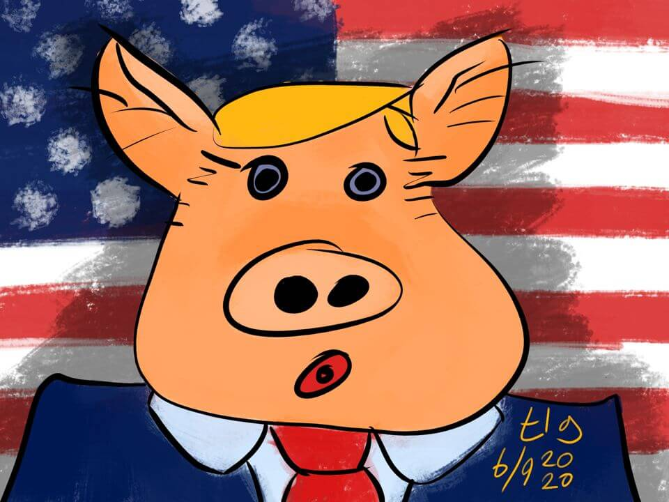 Drawing of Trump depicted as a pig standing in front of an American flag. Yeah.